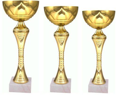 Pokal-8241-3-kosi